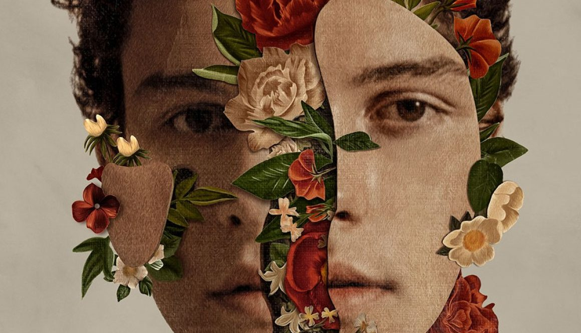 Shawn Mendes Album, All Chord Progressions & Tabs….